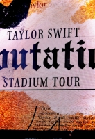 taylor-swift-reputation-tour-189