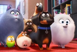 secret life of pets sequel
